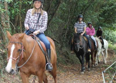 Horse routes